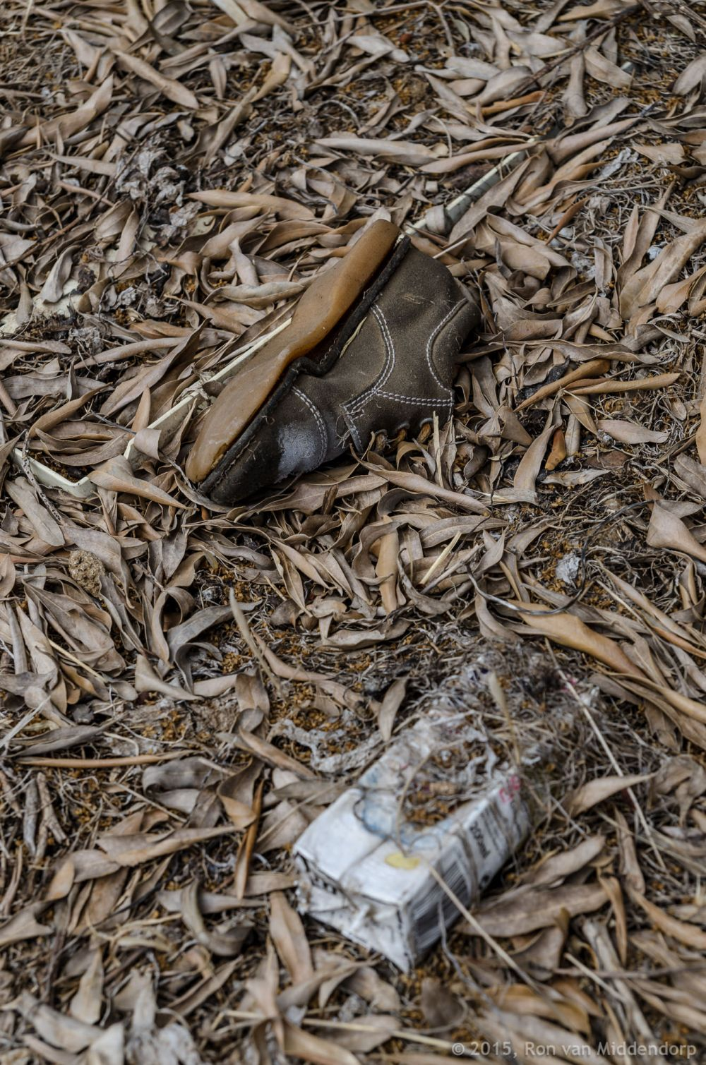 photo: garbage in nature