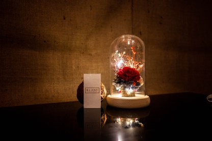 RENNES - PRESERVED RED ROSE DOME | LA VIE EN ROSE | BLANC SIGNATURE