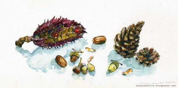Autumn Fruit '13