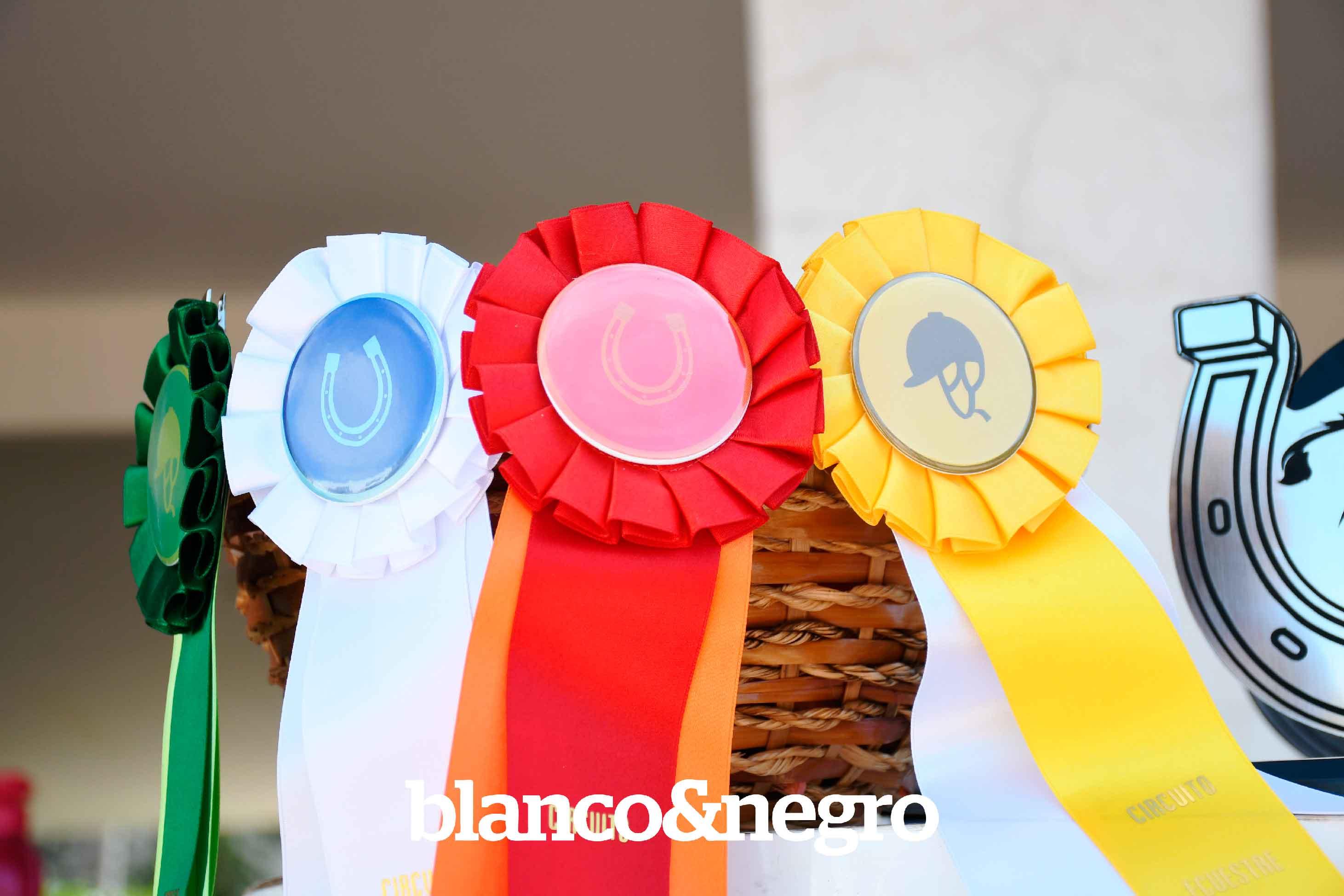 Competencias-Ecuestres-398