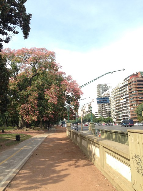 The parks meet the streets in Palermo