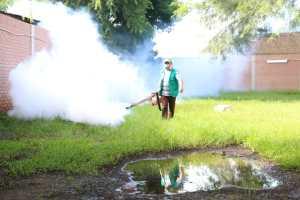 Bekämpningsmedel mot myggen som sprider denguefebern