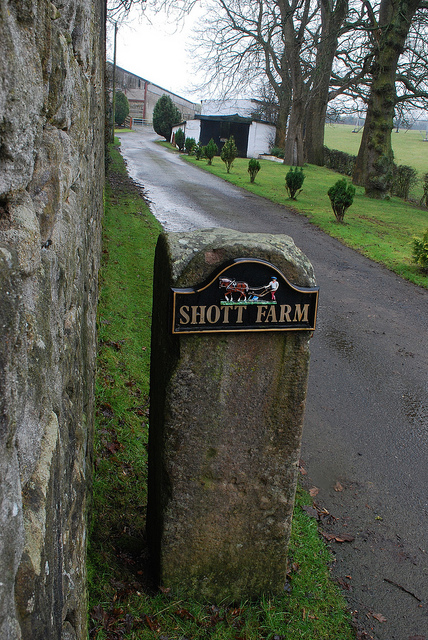 2010 Shott Farm Gatepost by J Brown