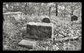 2014 Pet Cemetery at Greenhall by Andrew Thomson