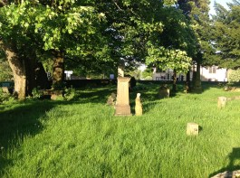 2014 High Blantyre Kirkyard in May
