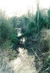2004 Old Mill Ground Blantyre Works
