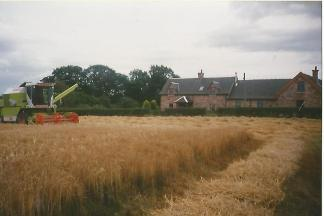 1990 Malcolmwood Farm. Photo by Jim Cochrane