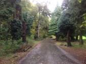 2013 Greenhall Park (PV)