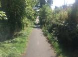 2014 Road leading to Parkburn, Backmuir Plantation