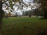 Oct 2014 Crossbasket Nursery