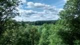 2014 Woodland near Trough Linn