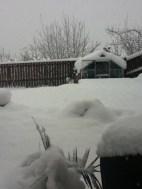 2010 December snow at Westcraigs
