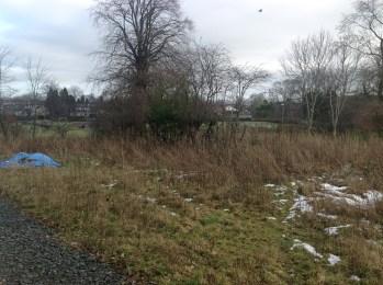 2015 Sergeants Acre, High Blantyre behind Kirkton Park (PV)