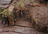 2015 Milheugh Wooden Box, January by Jim Brown
