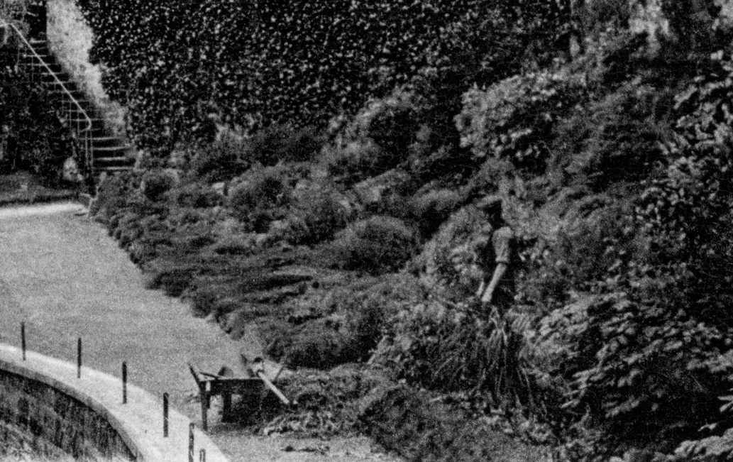 1924 Gardener at Crossbasket