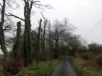 2015 January Auchentibber Road (PV)