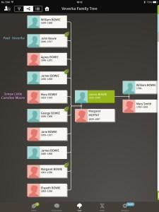 Bowie Family Ancestry