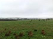 2015 Jan Auchentibber fields by PV