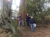 2015 Milheugh Redwoods. Jim ,Alex and Joey (PV)
