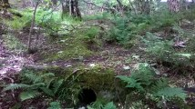 2015 Outfall near Priory Pit Magazine (PV)
