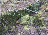 2015 Mavis Mill ruins , pictured in March (PV)