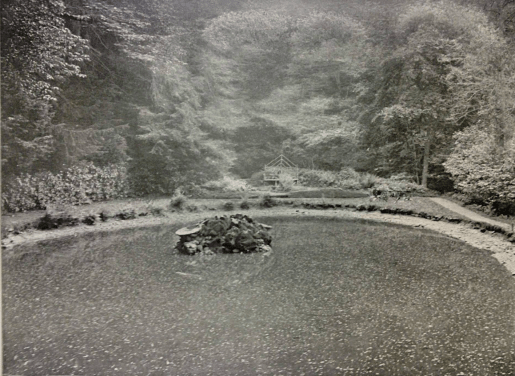1904 Oval Pool at Craigneith, Blantyre
