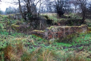 Laighlyock Farm Blantyre ruins 2014 by J Brown