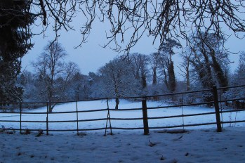 Greenhall Park Winter 2009 by Jim Brown
