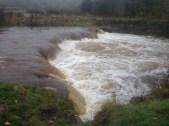 Milheugh Falls, Calder. Photo 15th Nov 2015 (PV)