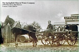 1900 Springfield Mineral Water Company wm