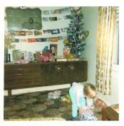 1973 Paul Veverka Christmas