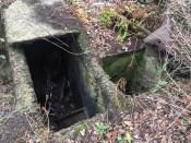 2017 Blantyreferme Bathhouse Ruins
