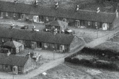 1955-bairds-rows4