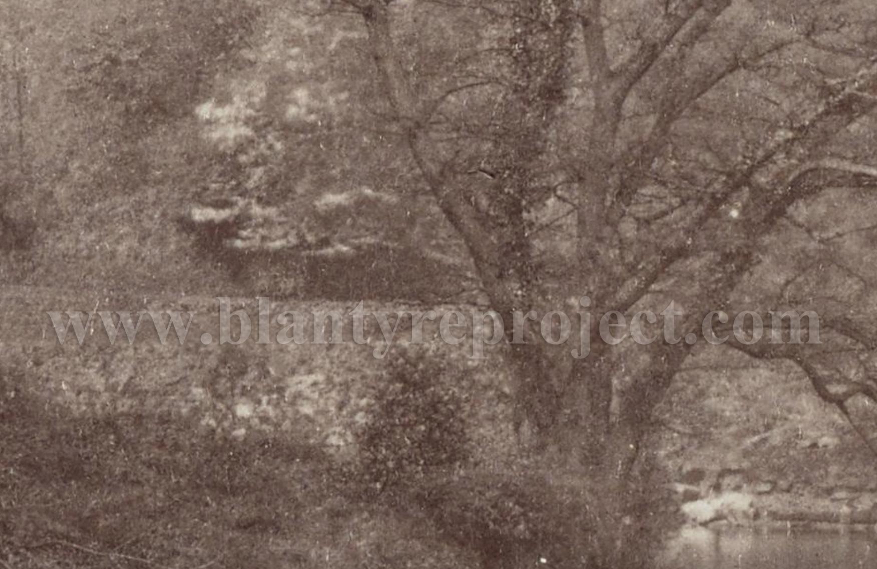 1870 Bothwell Riverbank James Valentine