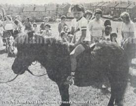 1978 DL Primary Summer Fayre