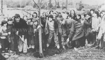 1978 Planting Trees at Larkfield Bing