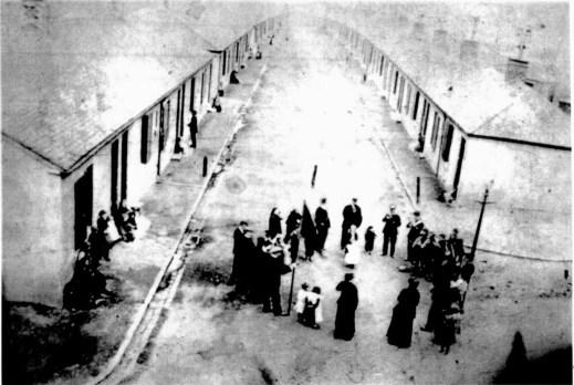1913 merrys rows