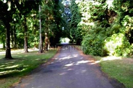 1999 Greenhall driveway wm