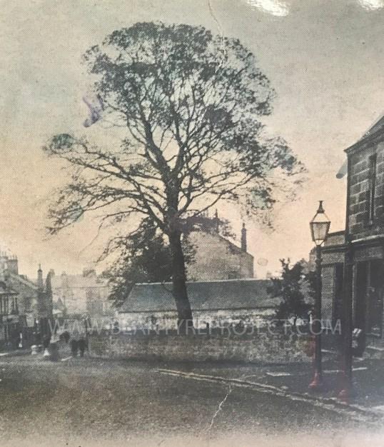 1900 Main Street 2 wm