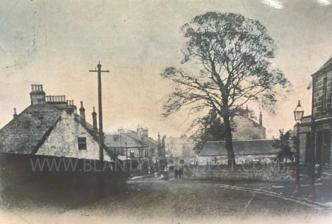 1900 main street wm