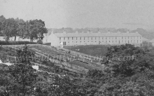 1900 Waterloo Row & Mill Gardens wm