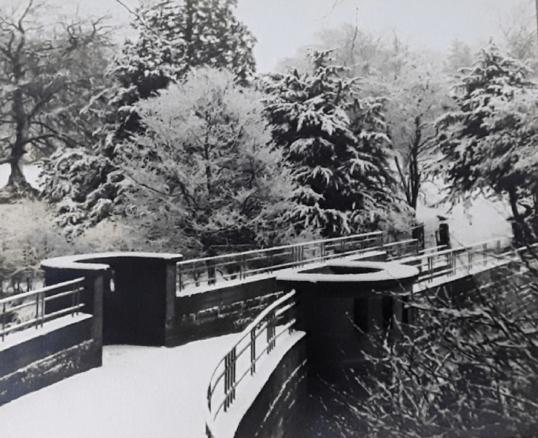 1956 March Milheugh Bridge from Frances Burns