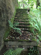 Steps leading to Bardykes Mill