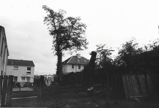 1982 Ness Drive