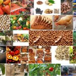 Agric-Agro-Allied-Products