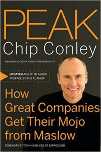Peak: How Great Companies Get Their Mojo From Maslow by Chip Conley