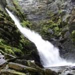 https://blasjon.com/vattenfall/