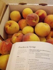 Step 1: Obtain Peaches