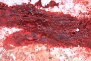Blood-Snow__64786-480x320