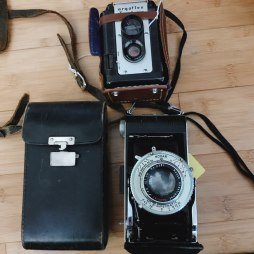 4/28: We found a good deal on some old cameras!